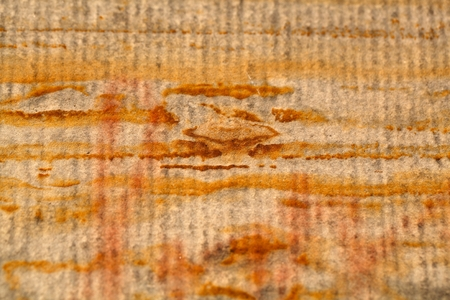 iron oxide: Surface of a yellow sandstone with iron oxide structures. Stock Photo