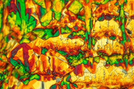 Crystals of Potassium ferricyanide under the microscope and in polarized light.