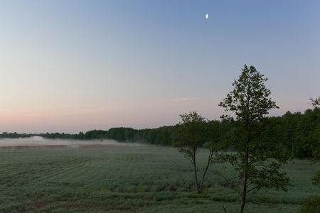 Landscape in the Bialowieza National Park in Poland at the early morning with meadows and fog. Stock Photo