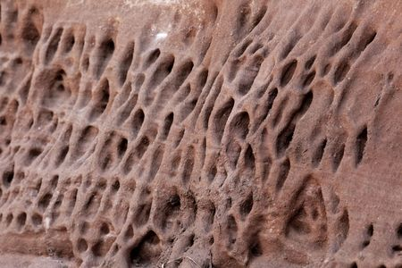 Tafoni weathering in red natural Jurassic sandstone wall. Imagens