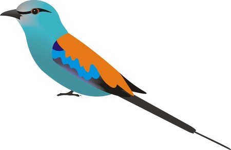 Illustration of an Abyssinian Roller (Coracias abyssinicus) Stock Photo
