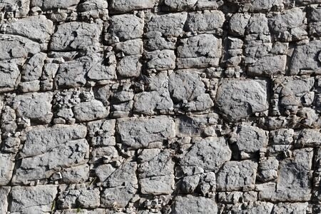 The surface of a nodular limestone of Palaeogene age from the Pyrenees in Spain. Stock Photo