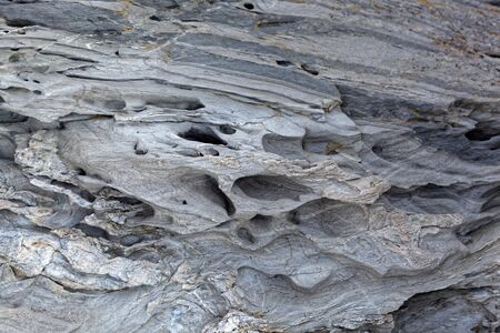 The surface of a weathered gray metamorphic rock.