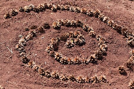 A spiral made of pine cones on red soil. 스톡 콘텐츠