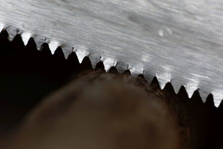 Macro photo of an old saw cutting a brown branch.  Stock fotó