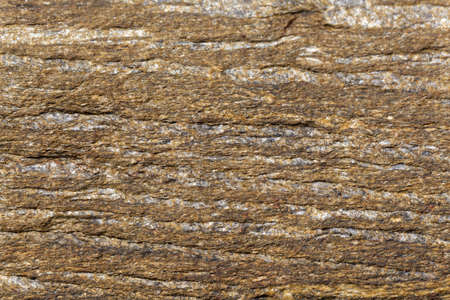Texture of the surface of a mica schist, carbonic age and from Brittany, France.