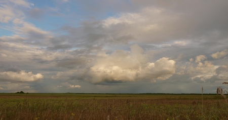 Rain clouds at wild field at spring. Time lapse. field before the rain. clouds fly low over the field and forest. beautiful evening sky. Stok Fotoğraf