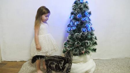 little girl hugs and plays with a cat in a room by the Christmas tree. child and christmas tree with beautiful garlands. christmas holidays concept Stock Photo