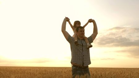 little daughter on fathers shoulders. baby boy and dad travel on a wheat field. The child and parent play in nature. happy family and childhood concept. Slow motion