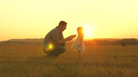 child picks flowers in meadow with his father. Little daughter walks with dad in meadow holding hands. child holds father s hand. family walks in evening out of town. Dad and baby are resting in park. Stock fotó