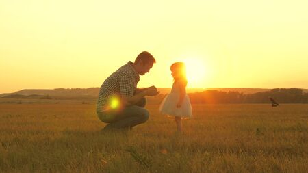 child picks flowers in a meadow with his father. Little daughter walks with dad in meadow holding hands. child holds father s hand. family walks in evening out of town. Dad and baby in park.