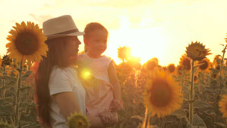 A little daughter in the arms of a farmers mother is walking along a sunflower field in rays of a beautiful sunset. a loving family travels through a blooming sunflower plantation. ecological tourism