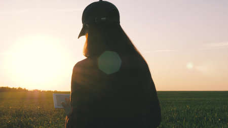 silhouette of a female farmer with tablet studying wheat crop in field. close-up. agronomist girl works with tablet on wheat field in sun. business woman plans her income in field. grain harvest. Banque d'images