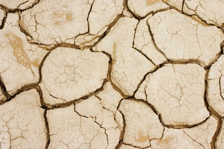 lack of water: Photo took to the ground in a dry terrain. The land is cracked due the lack of water.