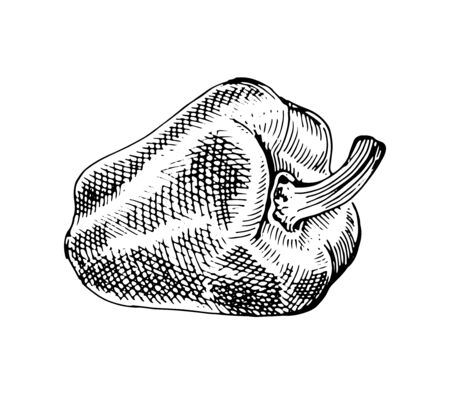 Bell Peppers, paprika, whole and half. Drawing graphics, black and white vector graphics Illustration