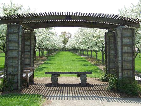 gazebo: grove in spring