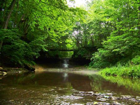 glen: yellow springs falls glen helen
