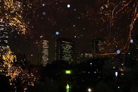 雨の夜のスカイライン 写真素材