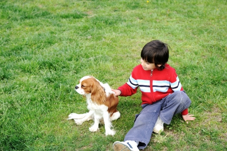 Young  boy playing with a dog photo