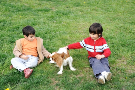 Two Young  boys playing with a dog photo