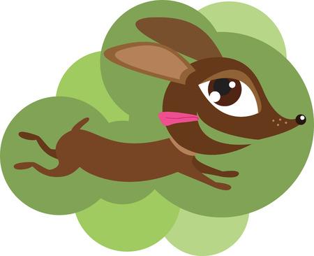 Running Brown Dog