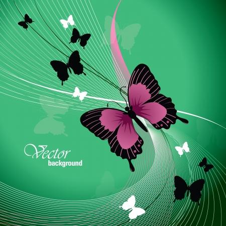 Vector Design Avec Papillons Banque d'images - 14371977
