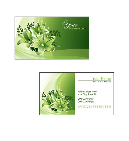 business card: Business Card Template  Vector Illustration