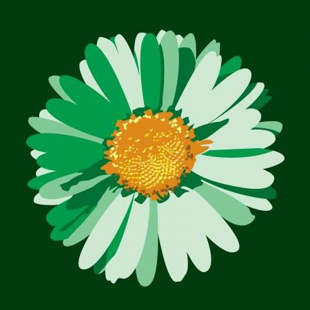 Daisy Flower Illustration Stock Vector - 14533783