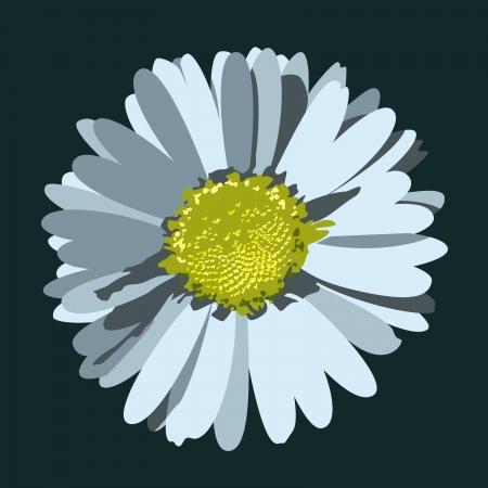 Daisy Flower   Illustration Stock fotó - 14692189