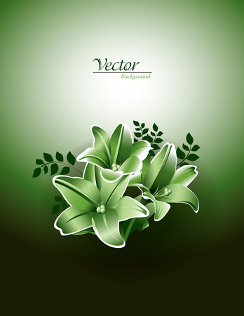 Bouquet of Lily Flowers  Vector Background   Vector