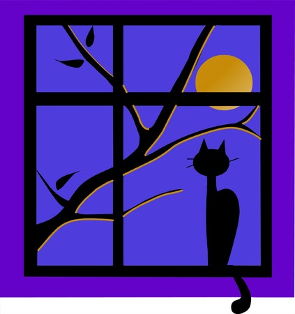 naive: The Black cat outside the window at night