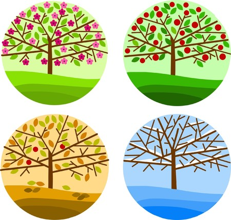 four trees respesenting four seasons