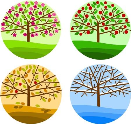 quatre saisons: quatre arbres respesenting quatre saisons