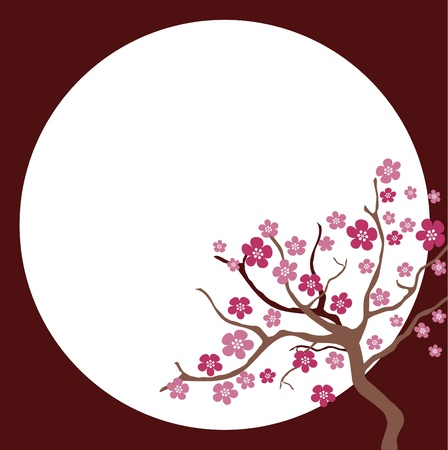 Cherry blossom in spring time Vector