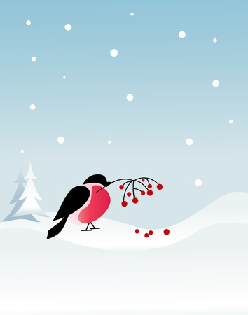 Bullfinch bird on winter background Stock Vector - 10842332