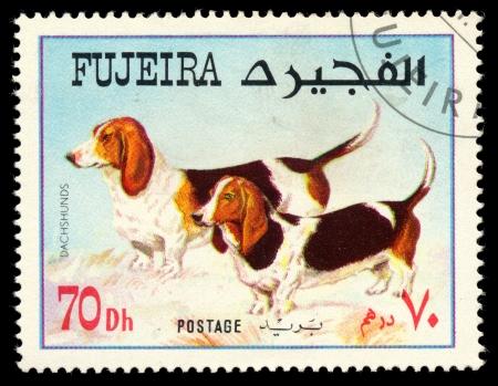 fujeira: FUJEIRA - CIRCA 1980: Postage stamp printed in Fujeira showing dog dachshunds, circa 1980