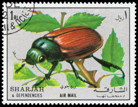 SHARJAH AND DEPENDENCIES - CIRCA 1972  stamp printed by Sharjah and Dependencies, shows insect, circa 1972