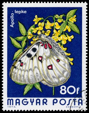 circa: HUNGARY - CIRCA 1974  A Stamp printed in Hungary shows butterfly Mountain Apollo - Parnassius apollo, circa 1974