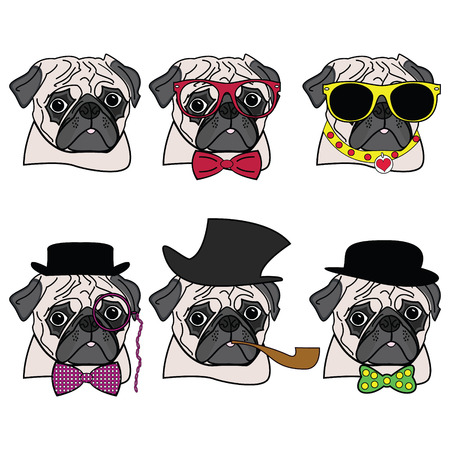 Pugs hipsters presented with vary accessories ( hats , glasses, monocle, tie bow)