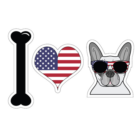 I love French bulldog with American symbols including American flag sun glasses and tie bow Reklamní fotografie - 40338656