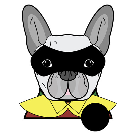 super dog: Superhero symbol  as  a French bulldog  character in red, green  and yellow covered with a cape and mask covering face.