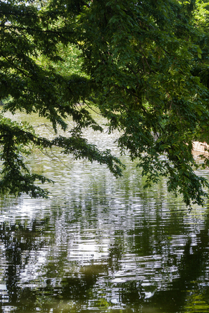Beautiful park scene in public park with lawn, trees, water and reflection of trees in water Stock Photo