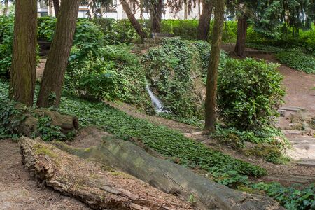 Beautiful park scene in public park with green grass field, green tree plant and waterfall Stock Photo