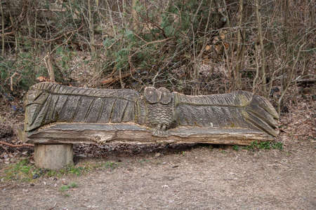 Wooden seat carved from the trunk of a tree in woodland