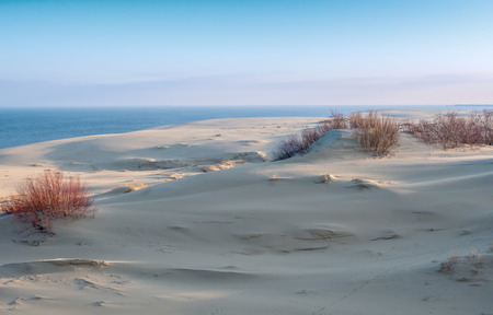 sand dunes: Sand dunes viewpoint at Curonian Spit in spring time