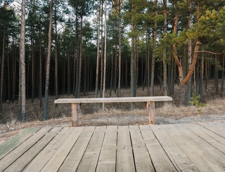 duckboards: Summer landscape with bench and wood flooring. in front of forest Stock Photo