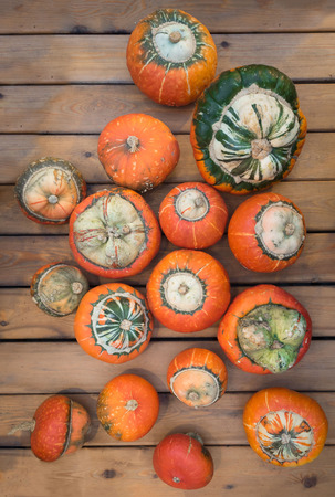 Assorted pumpkins on wooden boards with an shinning backdrop
