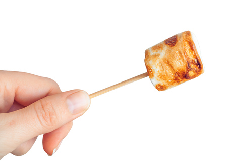 roasted marshmallows on a skewer on white background