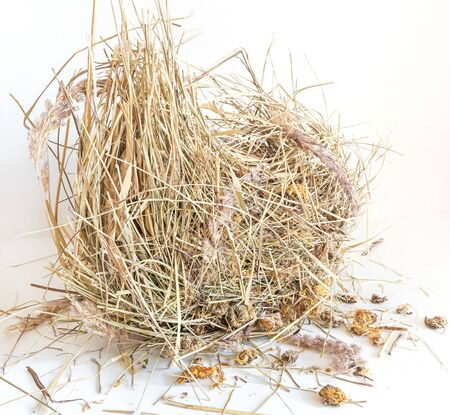 Dry hay isolated. A pile of straw on a white background 스톡 콘텐츠