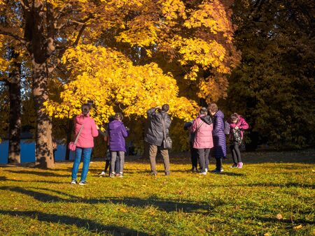 Moscow, Russia - October 11, 2018: Chinese tourists walks autumn park. Asian people take pictures on the background of a beautiful yellowed maple in the autumn park. Sunny day in the city park Izmailovo.